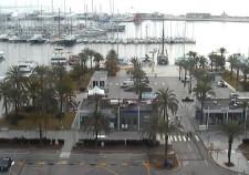 webcam Palma de Mallorca paseo maritimo